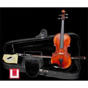 Online Rental Instrument Inquiry at Davidson Violins