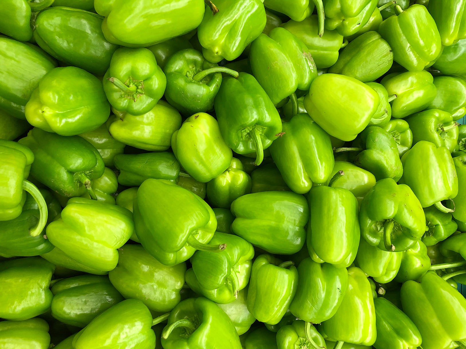 buy organic green pepper online london uk