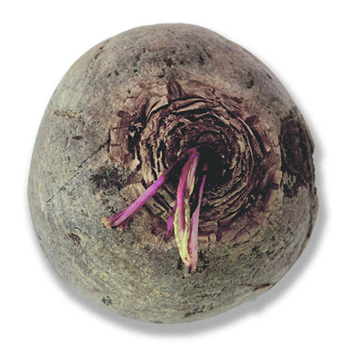 organic beetroot buy online london uk
