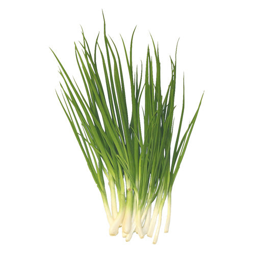 buy organic spring onions online london uk