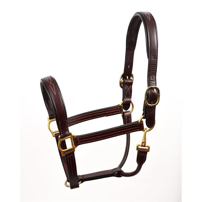 Leather Halter - Padded with Fancy Stitching