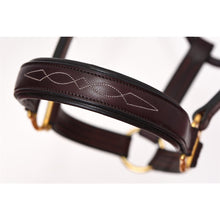 Load image into Gallery viewer, Leather Halter - Padded with Fancy Stitching