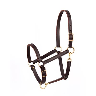 Leather Value Work Halter