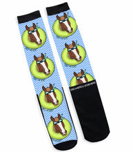 Load image into Gallery viewer, Dreamers & Schemers Socks