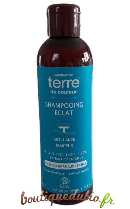 Shampooing Eclat - Cheveux normaux et gras