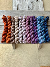 Load image into Gallery viewer, 12 Mini Skeins Dk