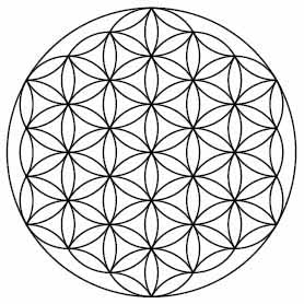 Illustrated image of the Flower of Life