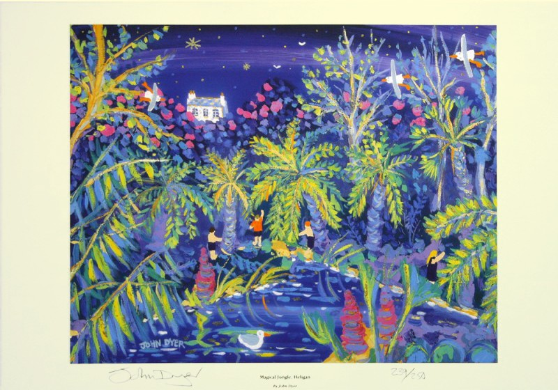 Limited Edition Print by John Dyer. Magical Jungle, Heligan Gardens