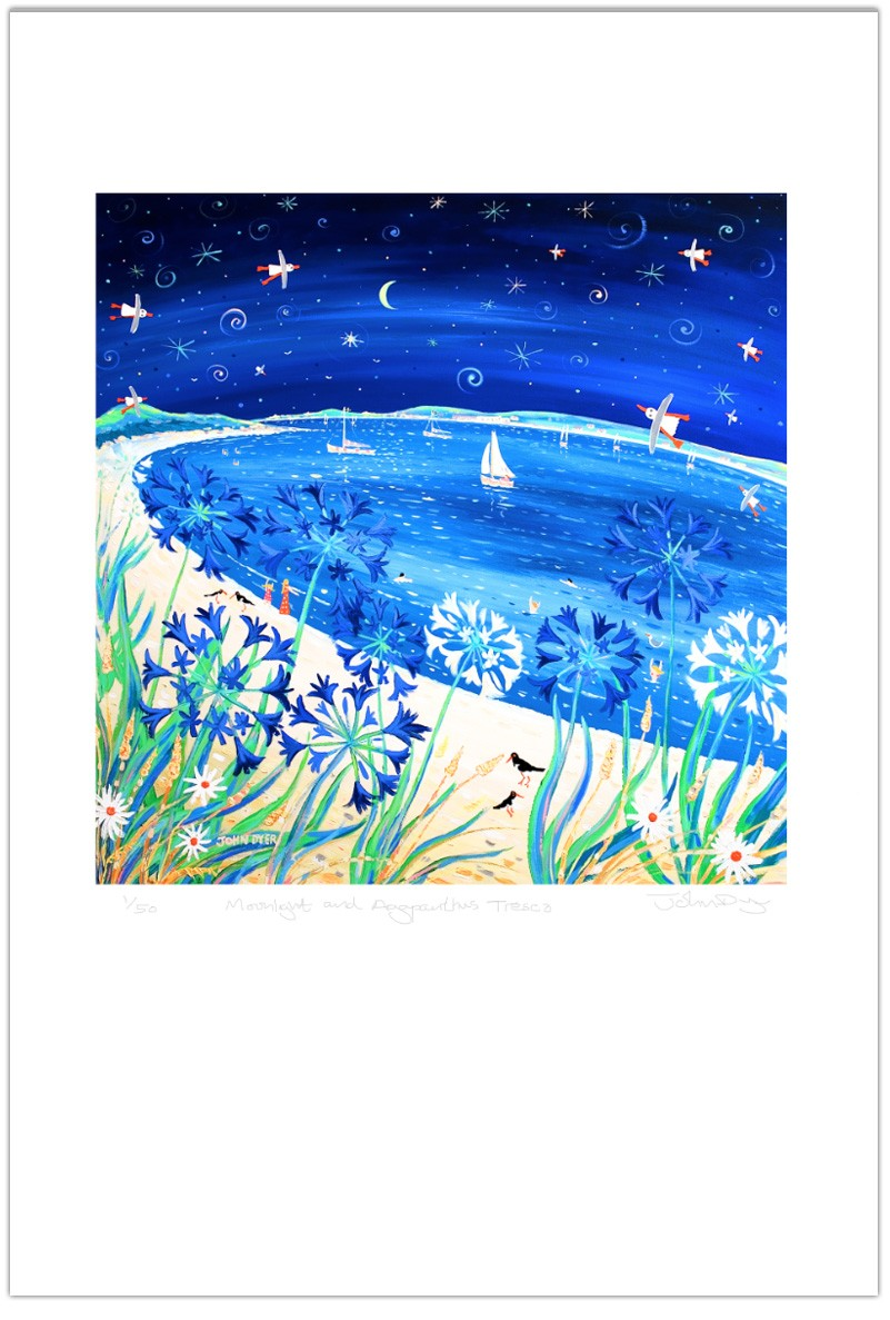 Limited Edition Print by John Dyer. Moonlight and Agapanthus, Tresco.