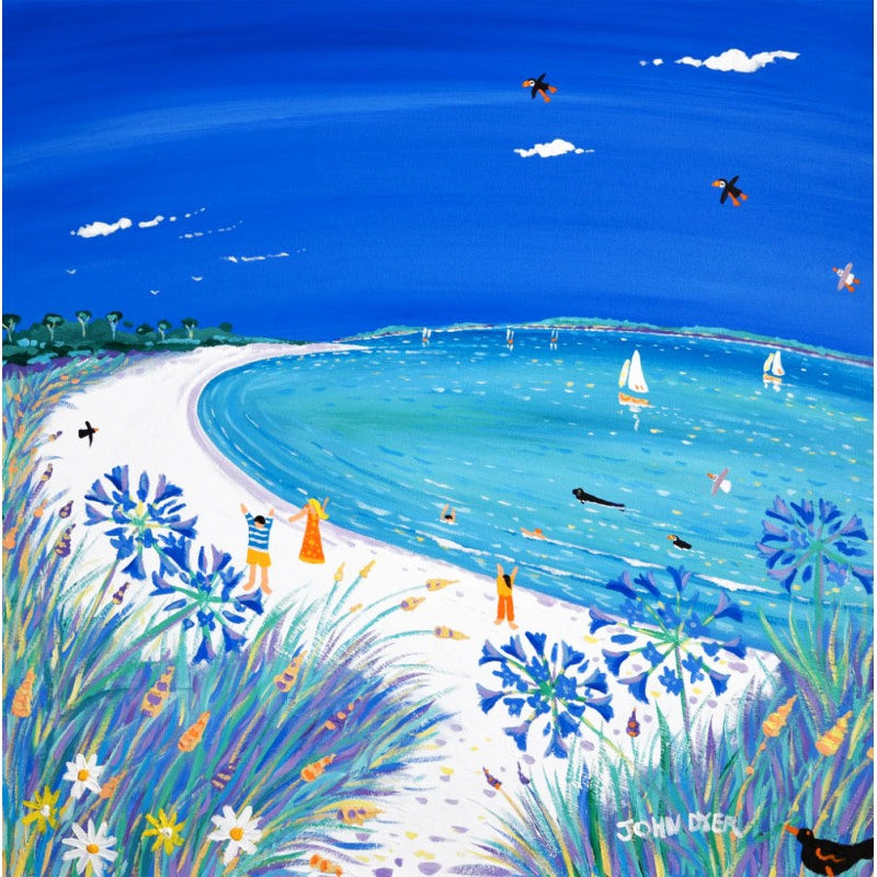 Tresco beach limited edition print by artist John Dyer. White sand and blue sea. Seals and puffins.