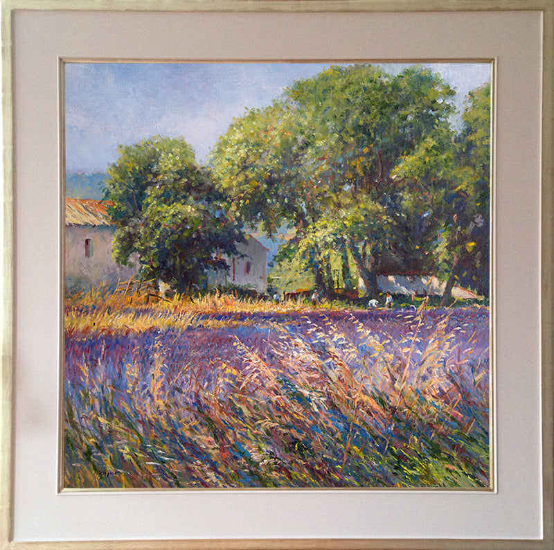 Original Painting by Ted Dyer. Lavender-time, Provence
