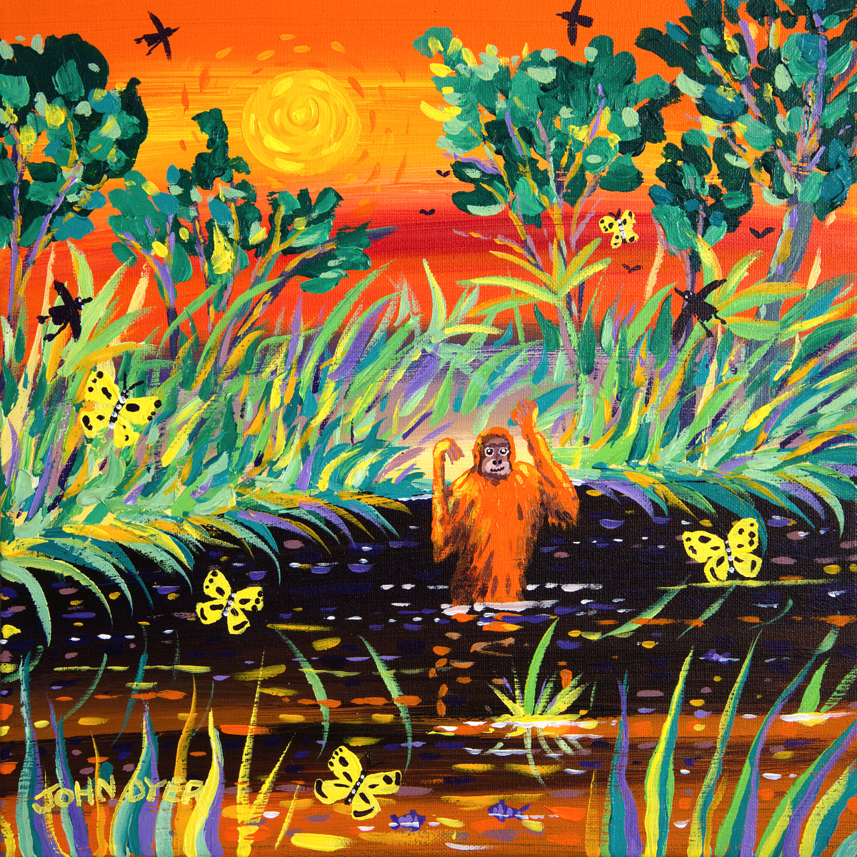 John Dyer Painting. Orangutan Sunset, Borneo. Orangutan wades across a river in the rainforest of Borneo.