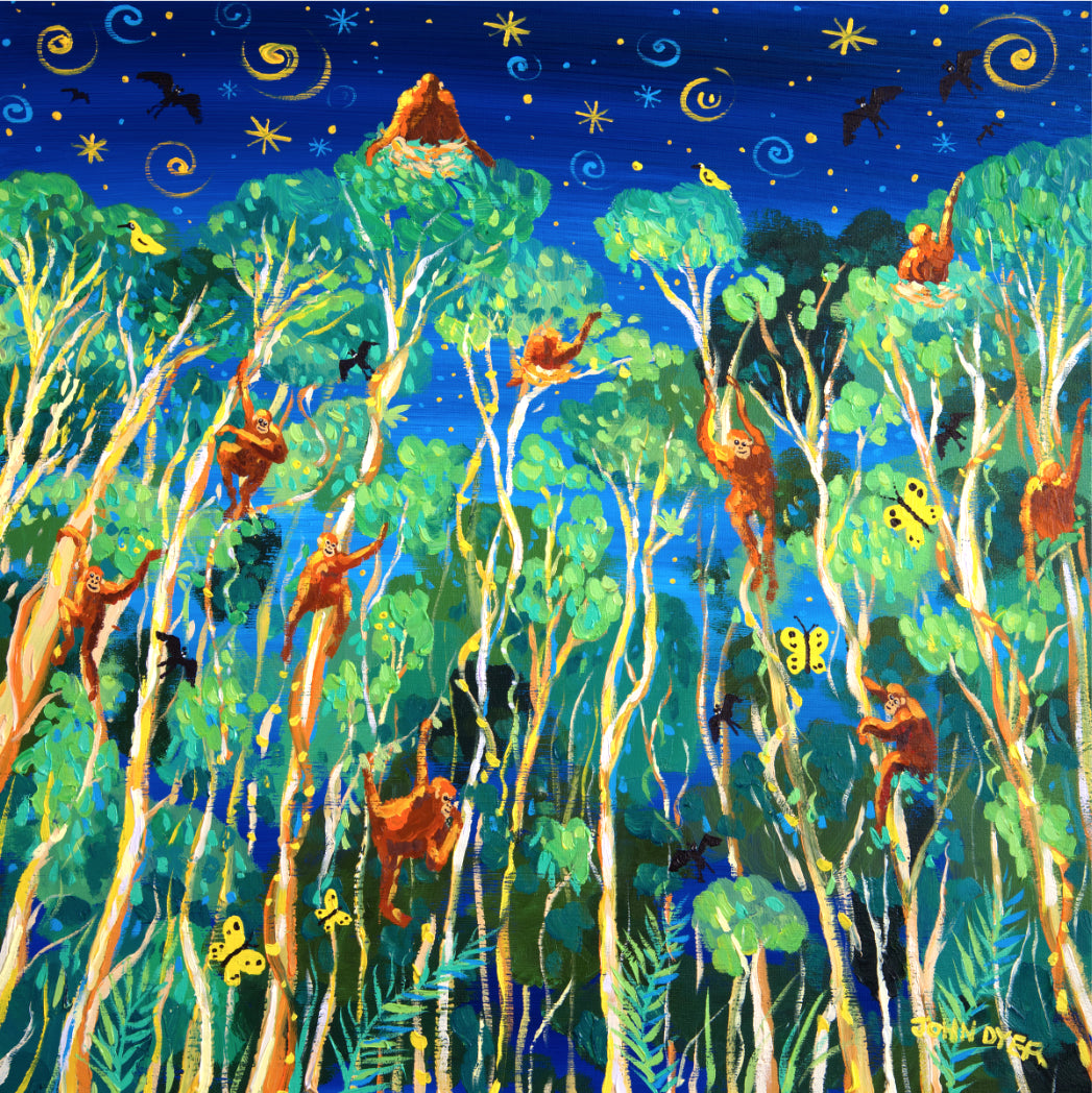 Twilight Orangutans, Borneo. Signed print by John Dyer of orangutans nesting at night