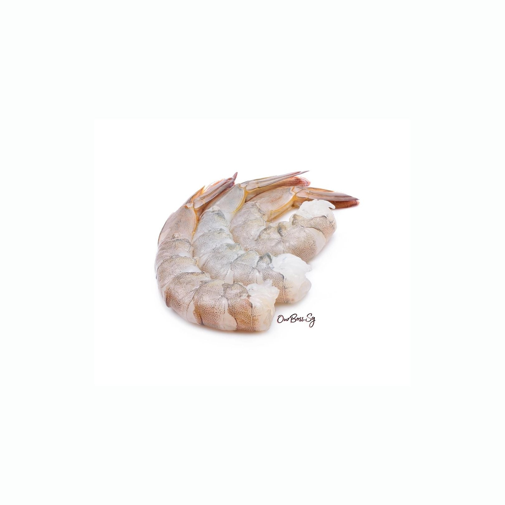 51/60 Prawn (with tail) 1kg