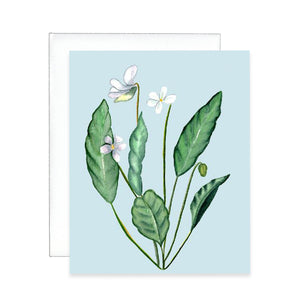 White Wildflower Greeting Card