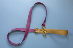 DOUBLE COLOR Biothane Leash | Added Color for Handle