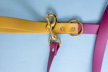 Load image into Gallery viewer, DOUBLE COLOR Biothane Leash | Added Color for Handle