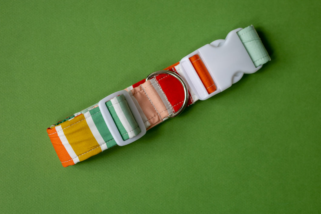 Holly Stripes Dog Collar