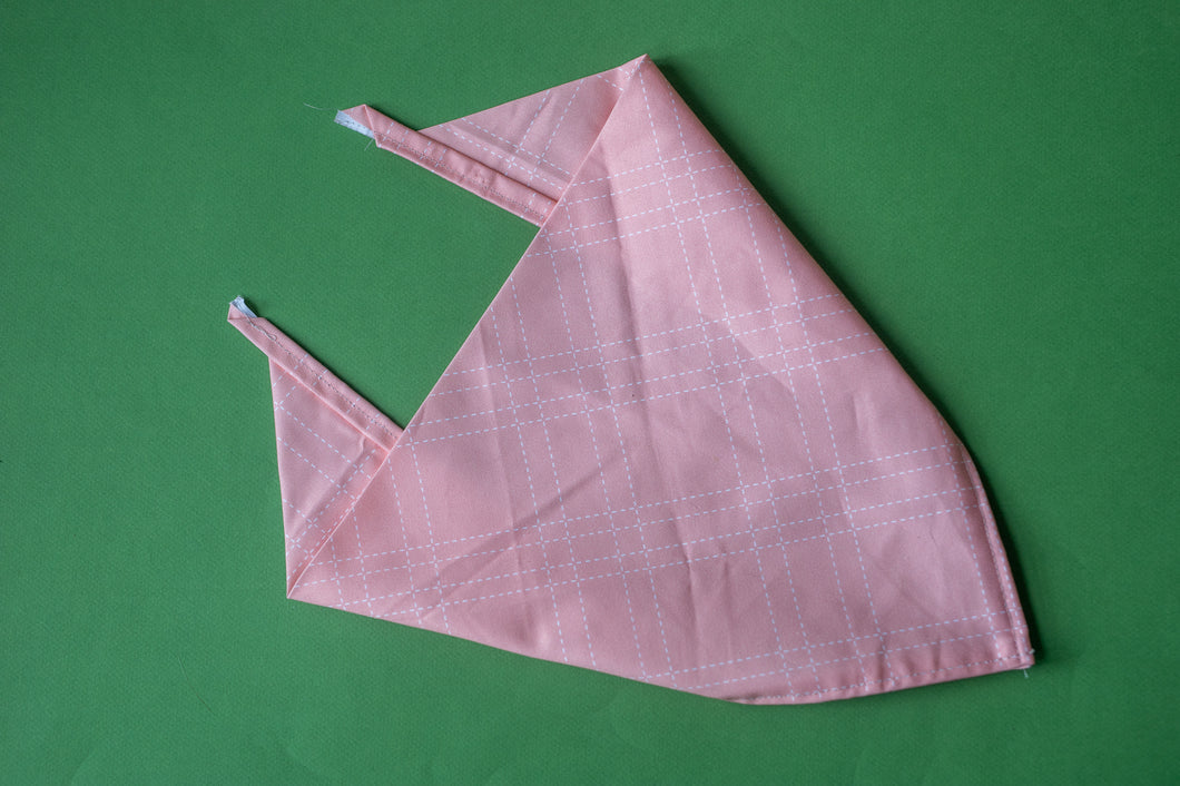 Quilt in Rose Bandana