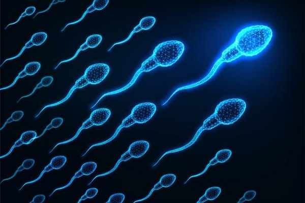 How To Increase Sperm Count And Volume?