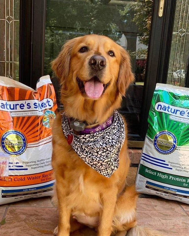 Nature's Select Subscription Dog