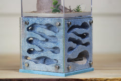 Casita (Custom Design 1-Blue)