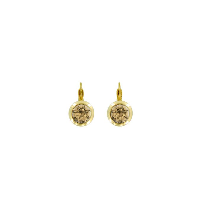 Bright Gold Round Euroback Earring-Golden Shadow