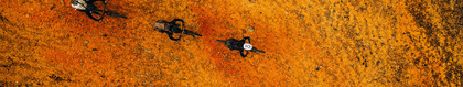 Jerseys For Women
