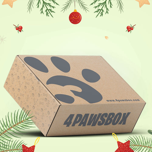 Christmas Box - 4Pawsbox