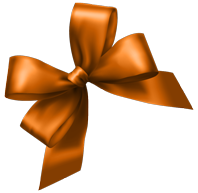 Watchsale Orange Bow Image