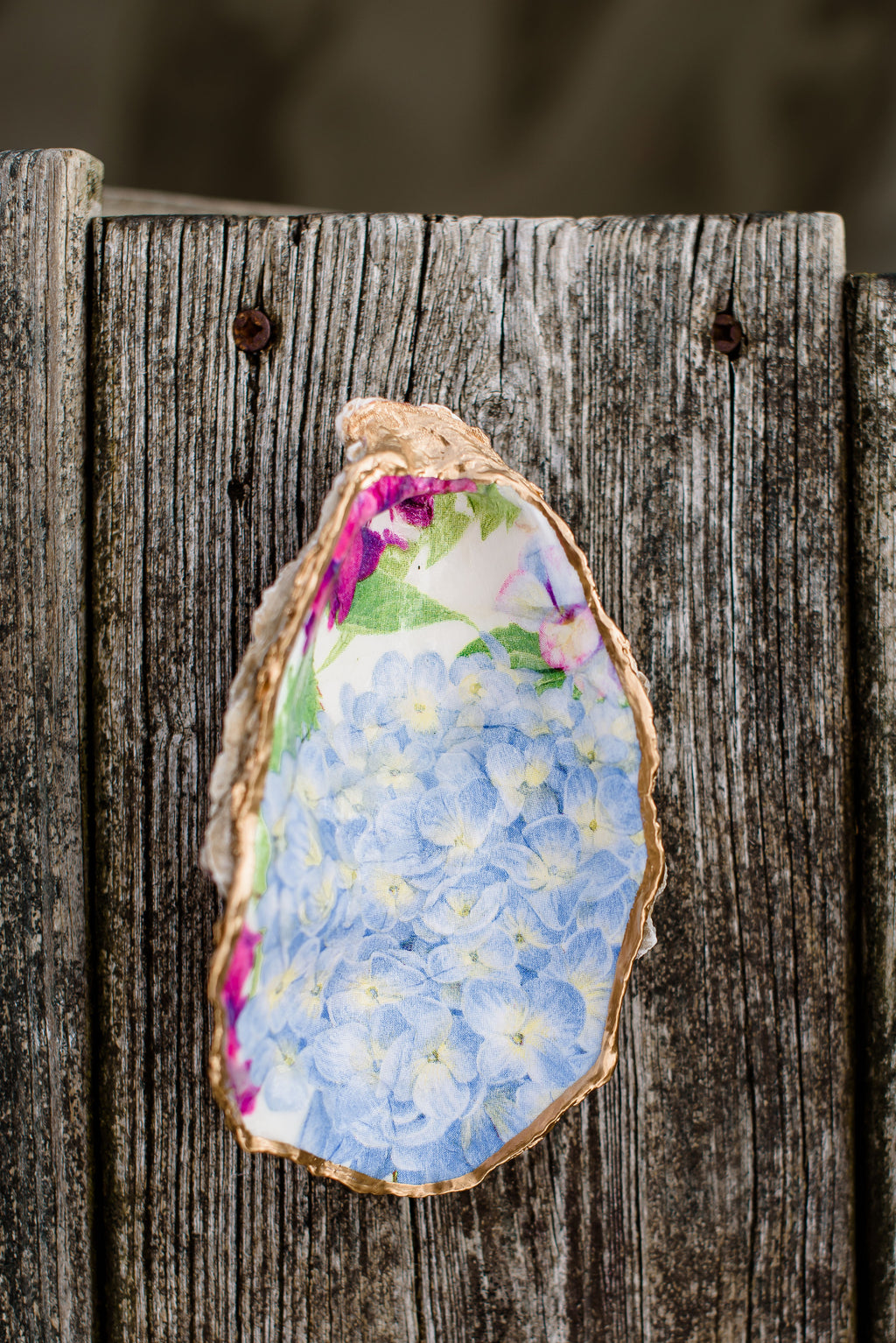 Classic blue hydrangea oyster shell