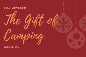 OVR eGift Card (Holiday Theme)