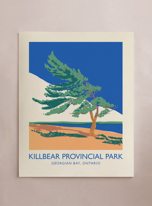 Travel Killbear Provincial Park - Tree