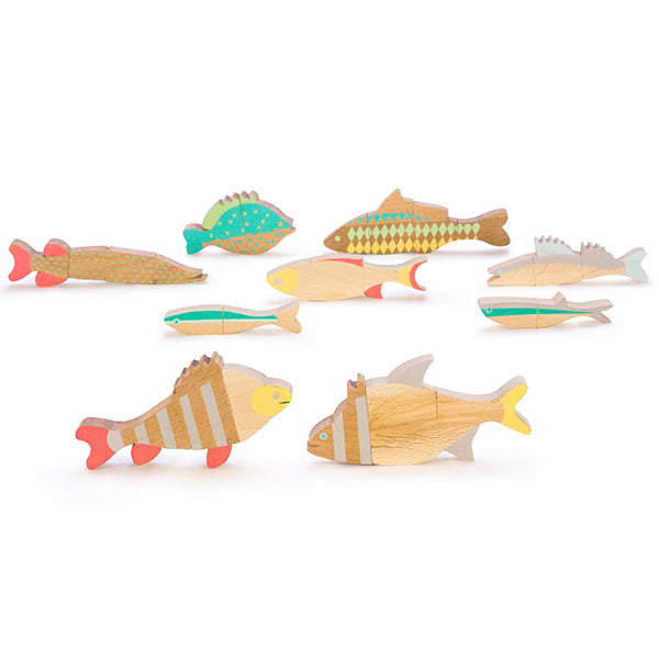 Hungarian Magnetic Fish Puzzle