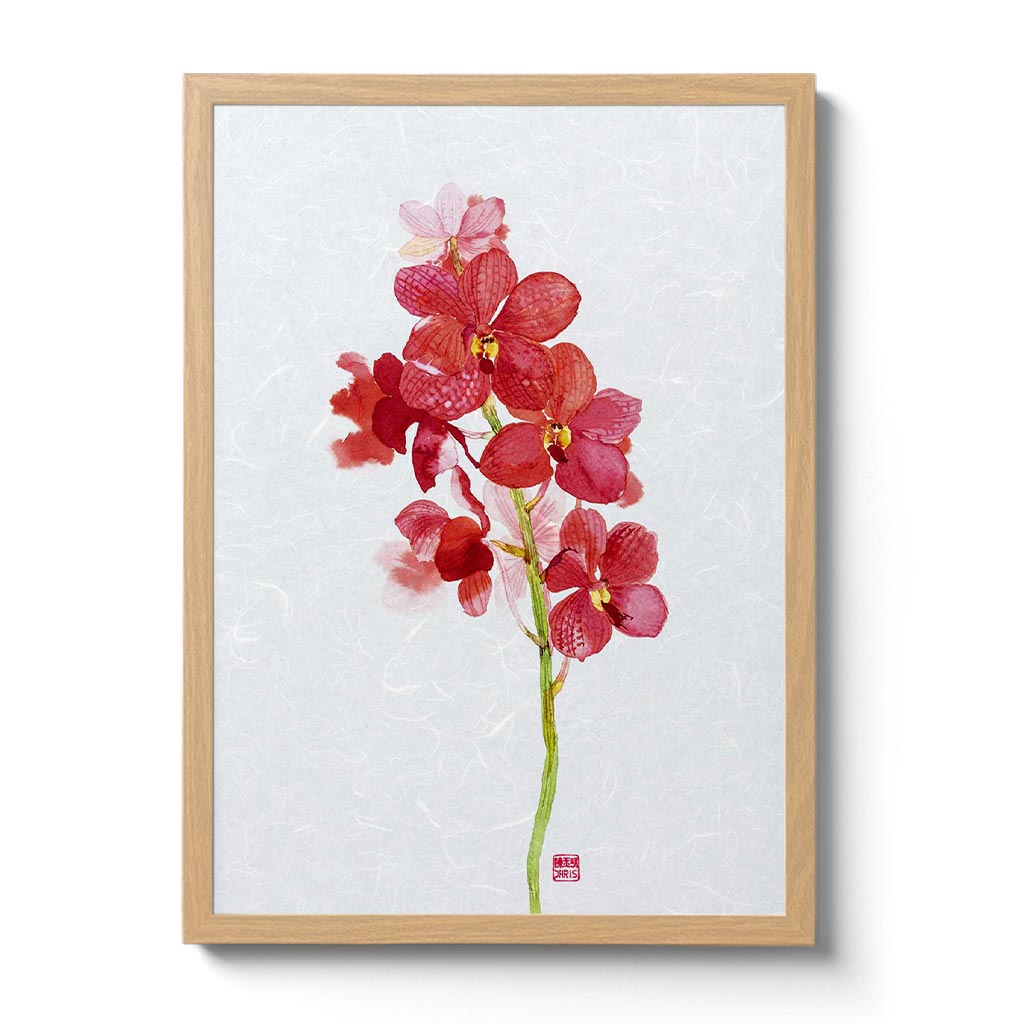 Ascd Red Gem Orchid Fine Art Print by Artist Chris Chun on Awagami Unryu Paper. Handcrafted in Japan.