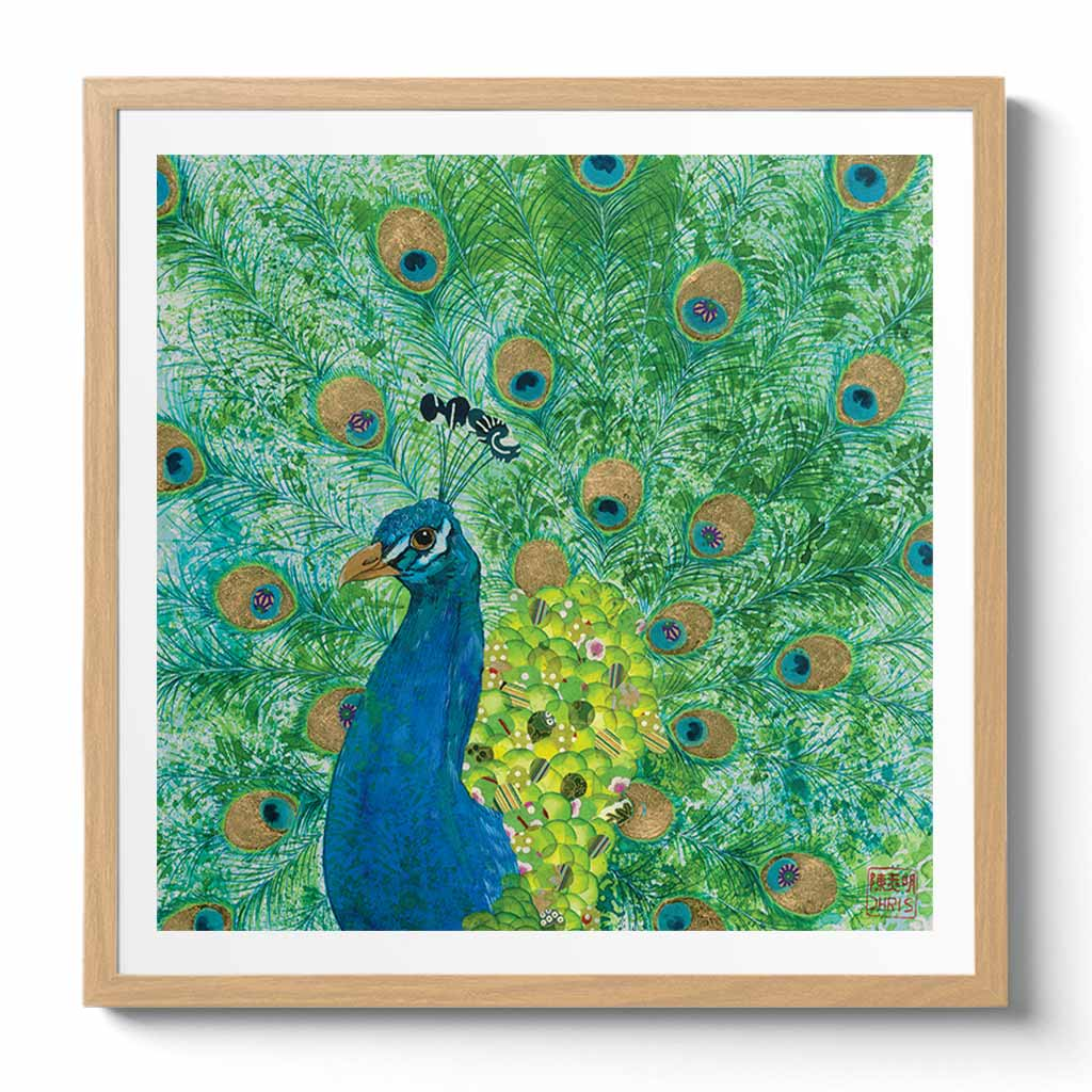 Peacock Fine Art Print by Artist Chris Chun