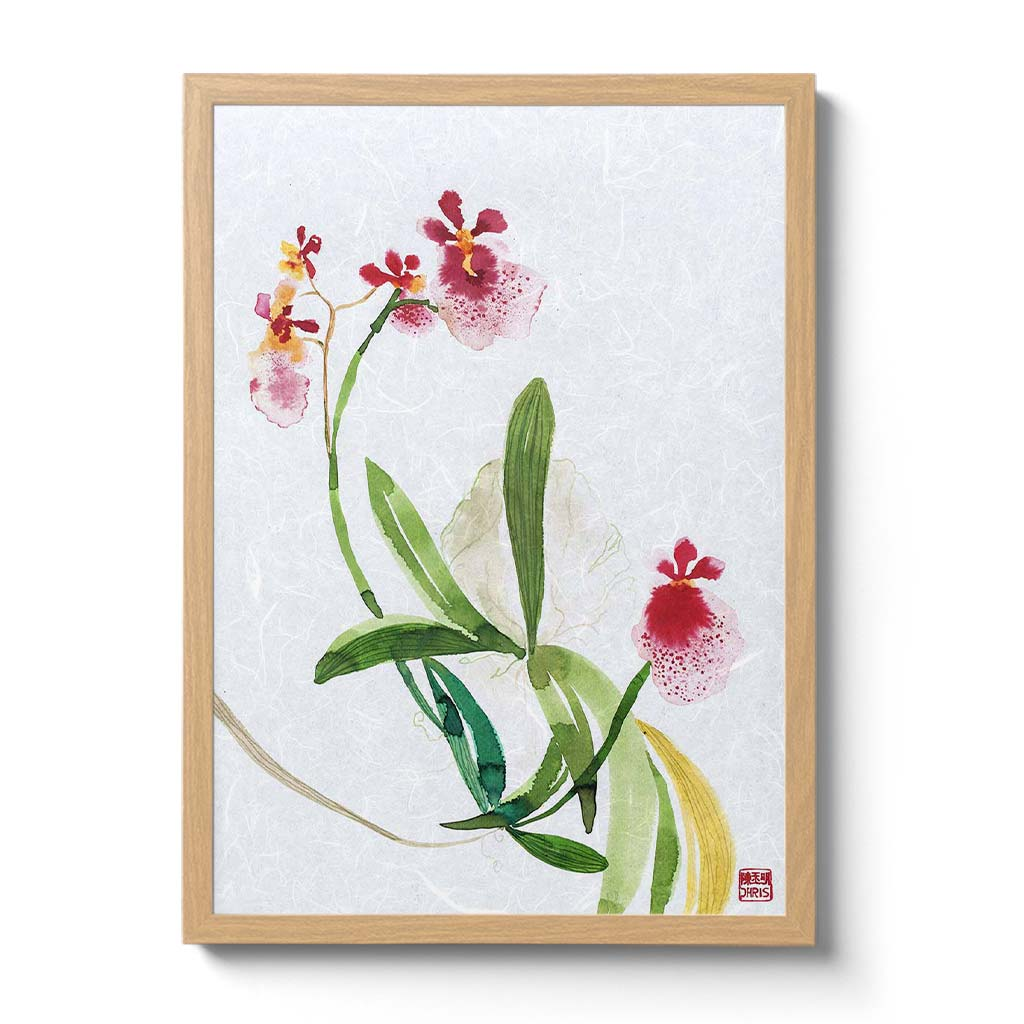 Tolumnia Hybrid Orchid Fine Art Print by artist Chris Chun. Archival Print on Awagami Handcrafted Unryu Paper.