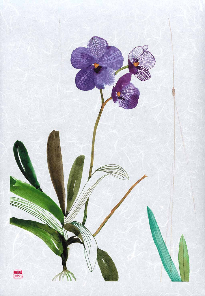 Vanda Sansai Blue Orchid Fine Art Print by artist Chris Chun. Archival Print on Awagami Handcrafted Unryu Paper.
