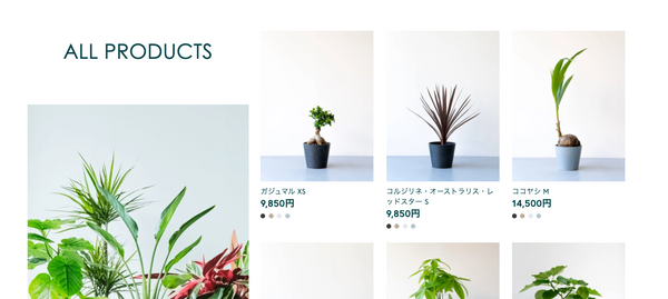 Shopify and plants 商品画像