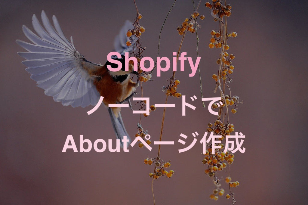 About Shopify ノーコード