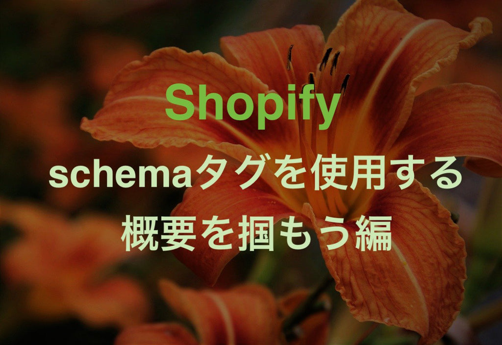 Shopify changing schema tags beginners lily