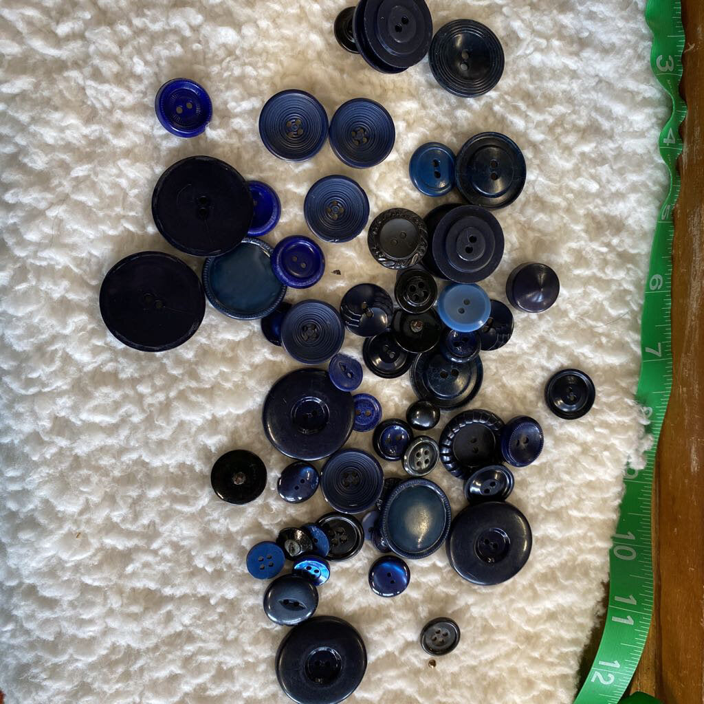Blue Button Lot #205