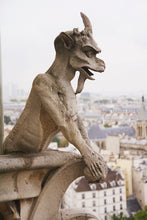 Load image into Gallery viewer, cathedral of Notre Dame de Paris Chimera Gargoyle rooftops photography wall art