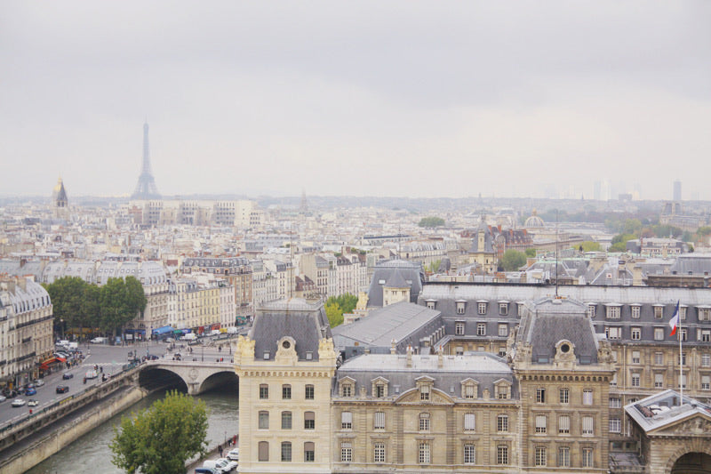 view from the towers of Notre Dame Paris France Skyline Eiffel Tower Les Invalides wall art photography