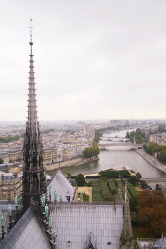 view from the top of Cathedral Notre Dame de Paris. river Seine, wall art photography