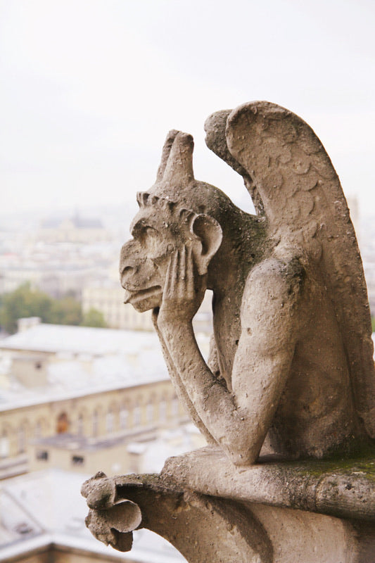 Chimera gargoyle of notre dame cathedral Paris France wall decor art photography