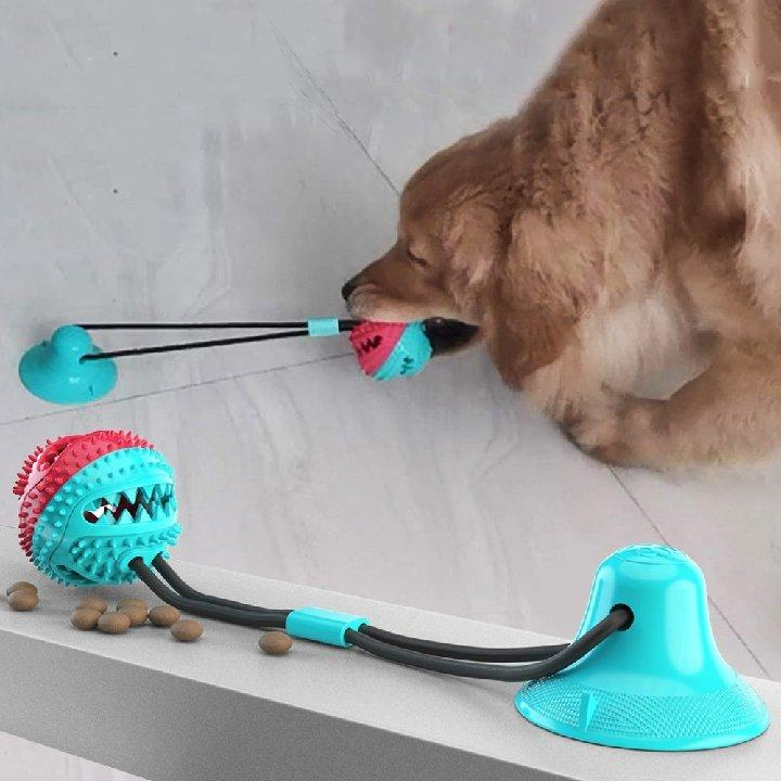 Suction Cup Tug Toy - Waggy Tails
