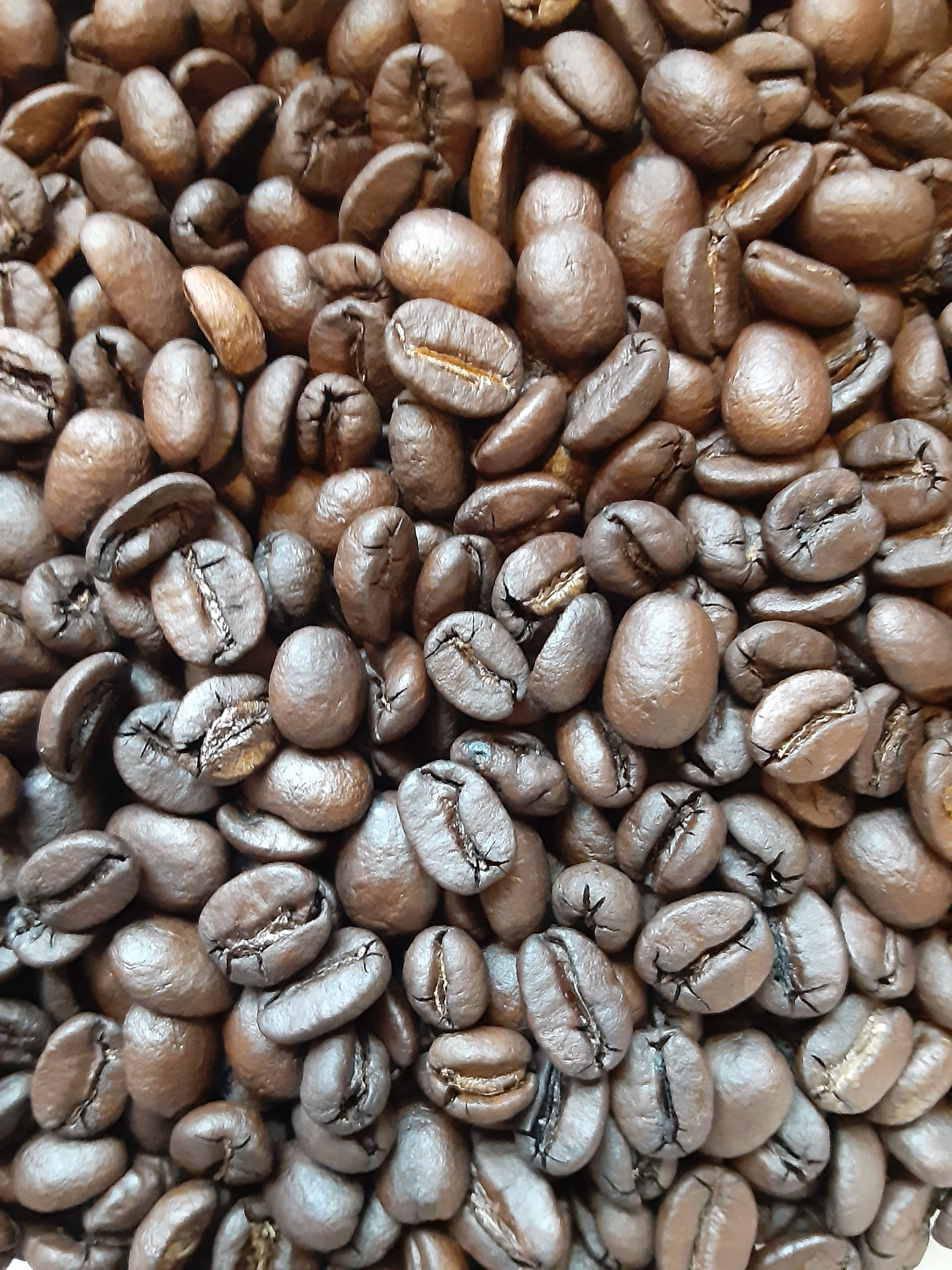 Brazil Coffee (Medium-dark Roast)