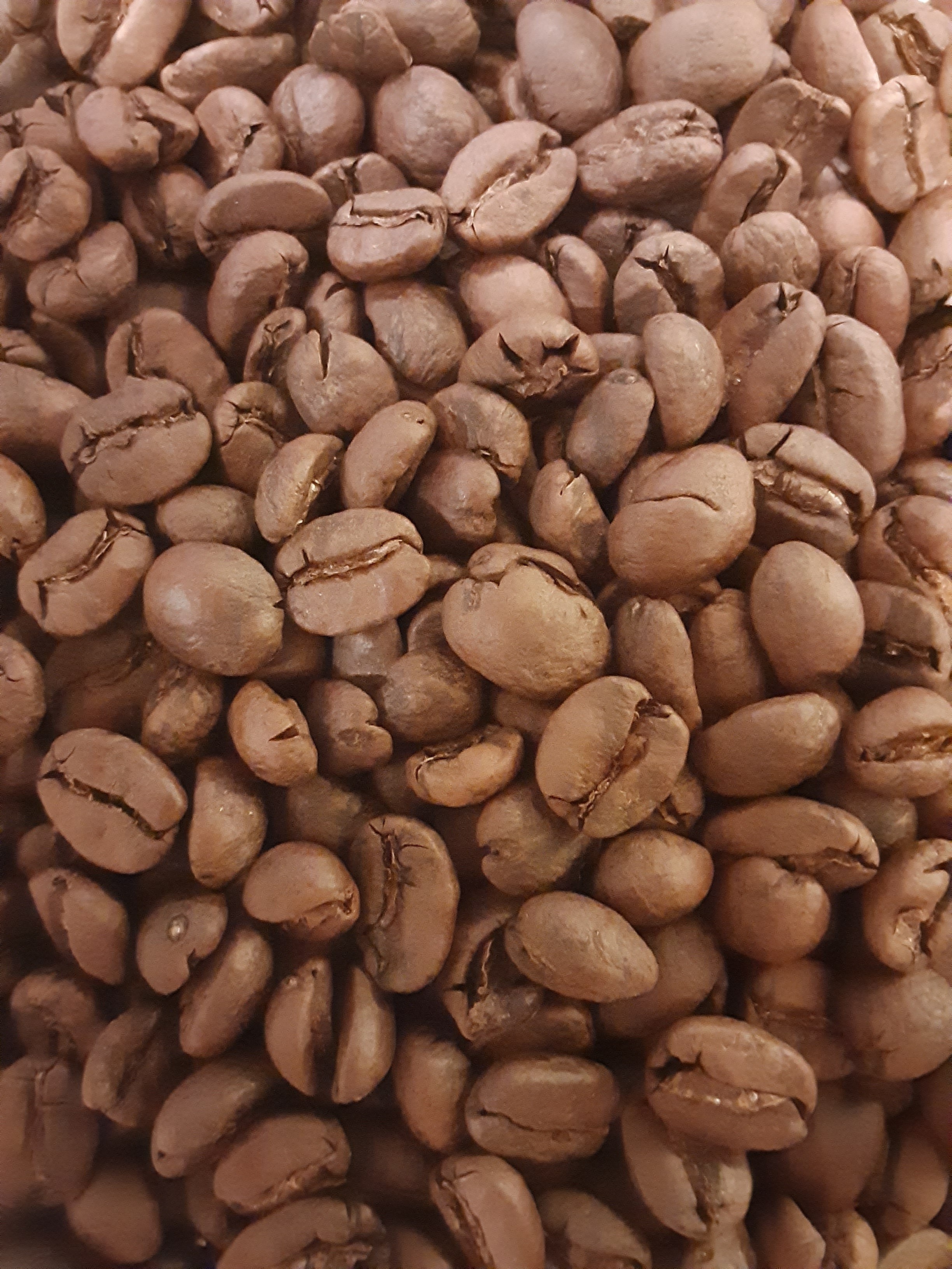 Honduras Decaffeinated Coffee (Medium-light Roast)