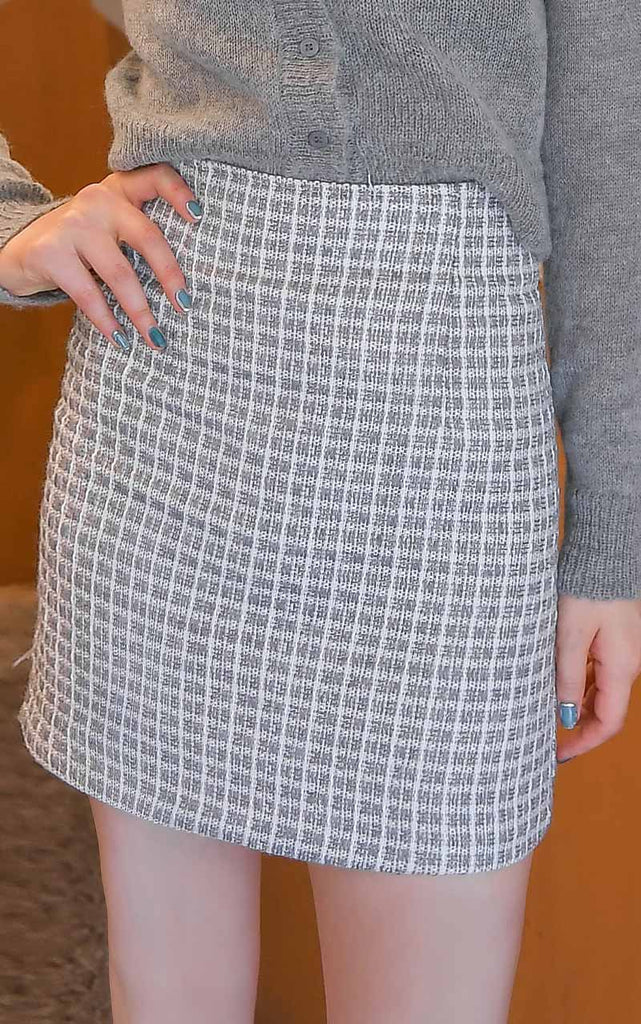 Wish You Tweed Skirt